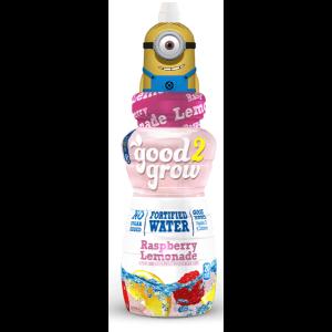Fortified Water Raspberry Lemonade
